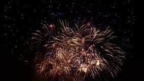 Noite dos fogos-de-artifício fotos de stock