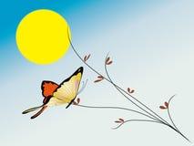 Noite e borboleta da lua Ilustração Stock