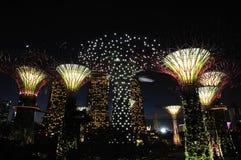 Noite em jardins pelo louro Imagem de Stock