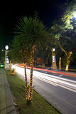 Noite em Kurortniy Prospekt em Sochi Imagem de Stock Royalty Free