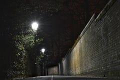 Noite escura da aleia Imagens de Stock Royalty Free