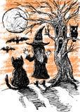 Noite Halloween ilustração royalty free