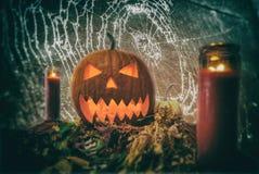 Noite Jack O& x27 de Dia das Bruxas; Lanterna Spiderweb Fotografia de Stock Royalty Free