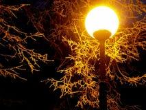 Noite light2 Imagens de Stock Royalty Free