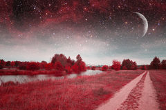 Noite místico da mola Foto de Stock Royalty Free