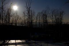 Noite Moonlit Imagens de Stock