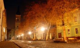 Noite na cidade Fotos de Stock