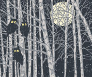 Noite na floresta Fotografia de Stock Royalty Free
