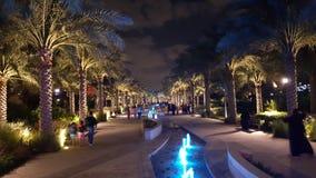 Noite na passagem da palma Foto de Stock Royalty Free