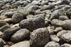 Noite na praia de pedra Fotos de Stock