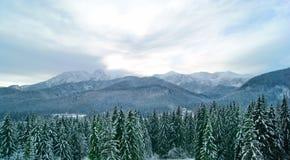Noite nebulosa nas montanhas Fotos de Stock Royalty Free