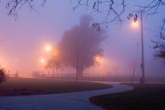 Noite nevoenta Imagem de Stock