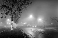 Noite nevoenta imagens de stock