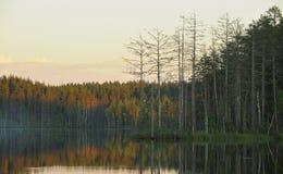Noite no lago Imagem de Stock