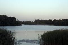 Noite no lago Willen Imagens de Stock Royalty Free