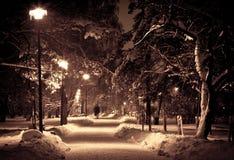 Noite no parque do inverno foto de stock