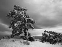 Noite nublado nas montanhas Foto de Stock Royalty Free