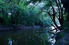 Noite pelo rio Fotografia de Stock
