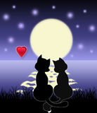Noite romântica Imagem de Stock Royalty Free