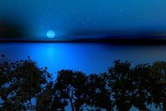 Noite sul ilustração royalty free
