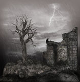 Noite tormentoso Imagem de Stock