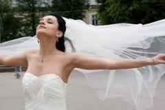 Noiva Imagem de Stock Royalty Free