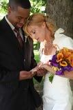 Noiva & noivo Imagem de Stock Royalty Free