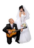 Noiva ao noivo Foto de Stock Royalty Free