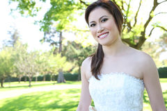 Noiva asiática bonita do casamento no parque Foto de Stock Royalty Free