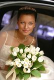 Noiva bonita Imagem de Stock