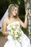 Noiva bonita Imagem de Stock Royalty Free