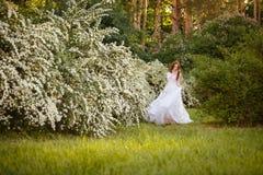 Noiva bonita do ruivo no vestido de casamento fantástico no jardim de florescência foto de stock