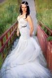 Noiva bonita em um campo Imagem de Stock
