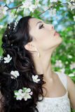 Noiva bonita em um jardim de florescência Fotografia de Stock