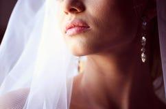 Noiva bonita na luz suave Imagem de Stock