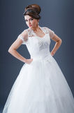 Noiva bonita no estúdio Imagens de Stock Royalty Free