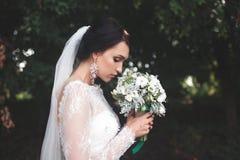 Noiva bonita nova foto de stock