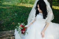 Noiva bonita nova fotografia de stock royalty free