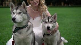 Noiva com cães roncos filme