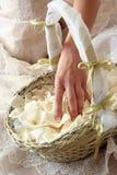 Noiva com a cesta Imagens de Stock Royalty Free