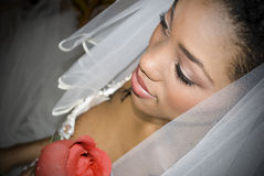 A noiva com levantou-se Fotografia de Stock Royalty Free