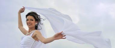 A noiva com um véu de vibração fotografia de stock