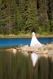 Noiva da linha costeira Imagem de Stock Royalty Free