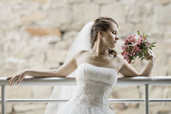 Noiva de Beautifull Fotos de Stock Royalty Free