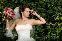 Noiva de Beautifull Fotos de Stock