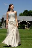 Noiva de Sun Imagens de Stock Royalty Free