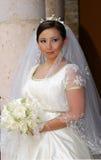 Noiva do casamento Fotografia de Stock Royalty Free