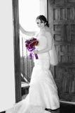Noiva do casamento Imagem de Stock Royalty Free