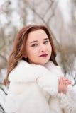 Noiva do inverno Foto de Stock