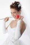 A noiva e levantou-se Fotos de Stock Royalty Free
